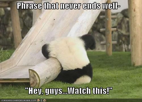 Lolcat-bild med panda