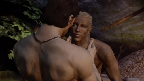 Homosexuellt sex i Dragon Age Origins